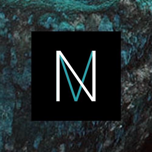 Niedermoor's avatar