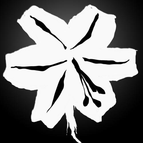 Die Weisse Lilie's avatar