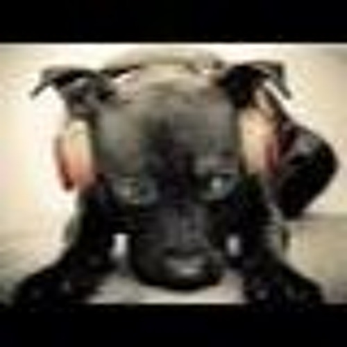 User 159139054's avatar