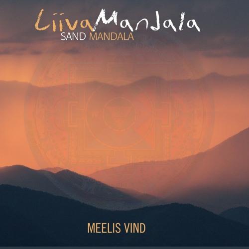 Meelis Vind's avatar