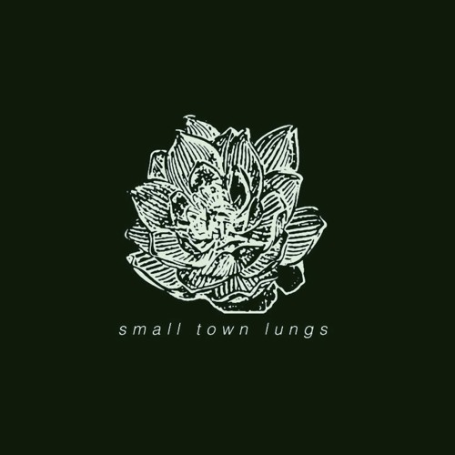 Small Town Lungs's avatar