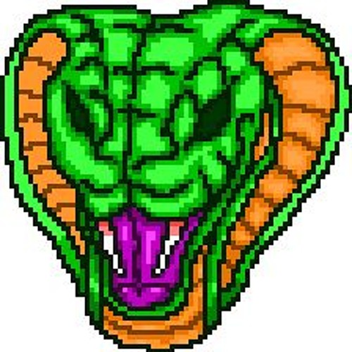 Jake The Snake(Max Lytle)'s avatar