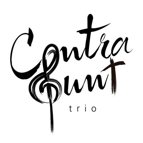 Contrapunt Trio's avatar