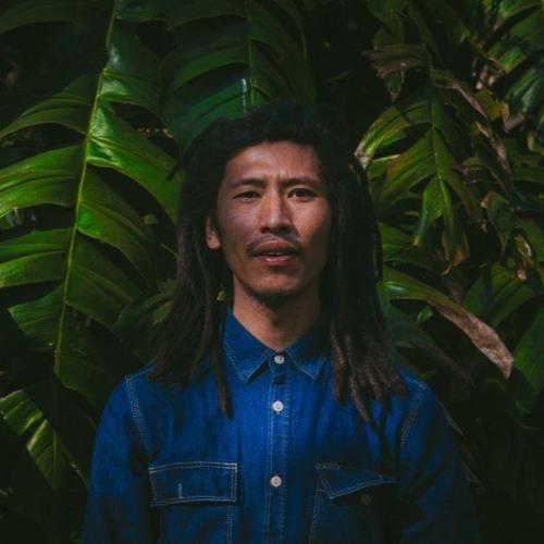 Cultivation Muzik's avatar