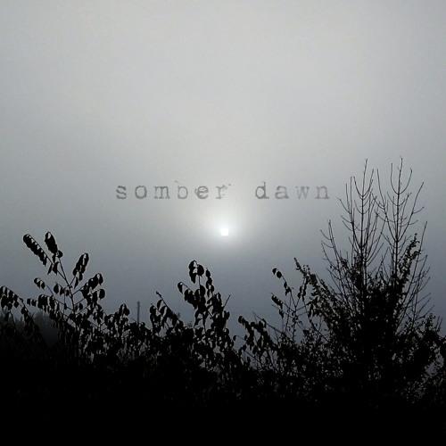 Somber Dawn's avatar