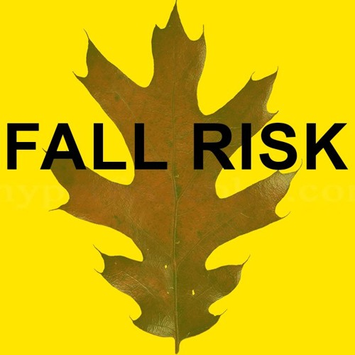 Fall Risk Project's avatar