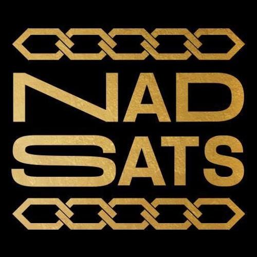 Nadsats's avatar