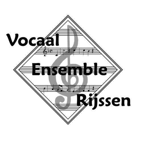Vocaal Ensemble Rijssen's avatar