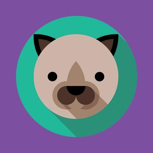 HOUSE - EDM ZOO's avatar