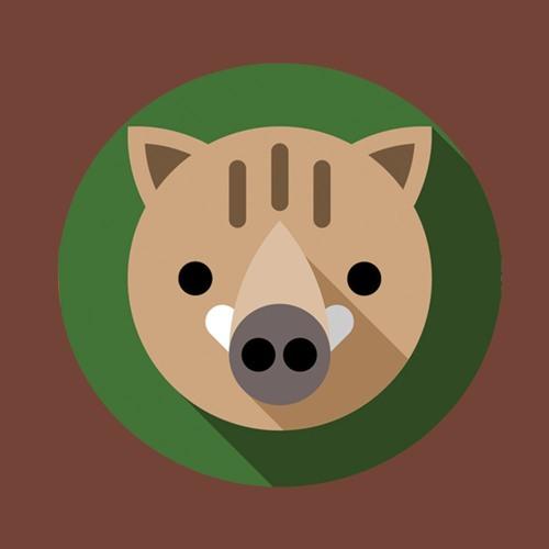 HARDSTYLE - EDM ZOO's avatar