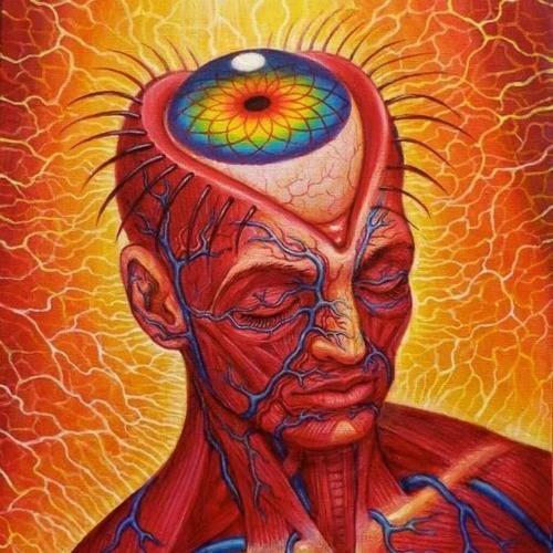 Psilo Mind's avatar