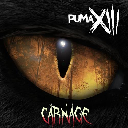 Puma XIII's avatar