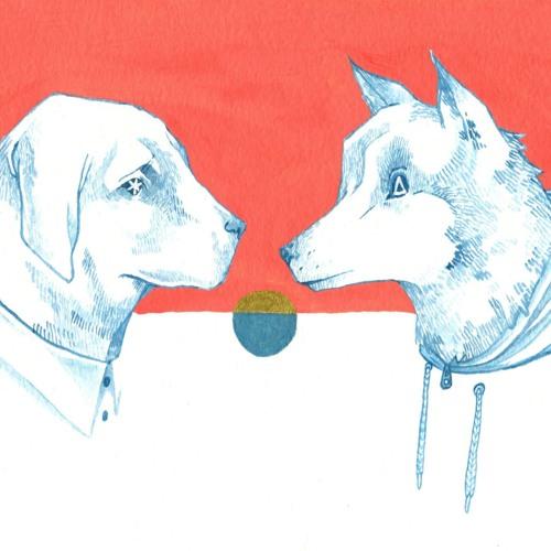 Dingle Dog's avatar