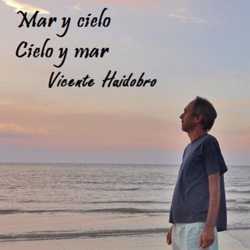 Marcelo Melitsko's avatar