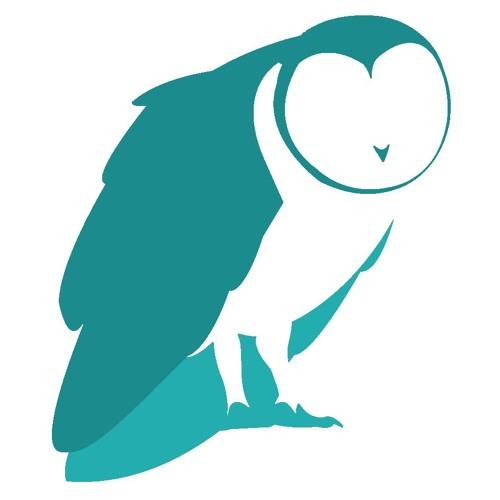 The Owl Field's avatar