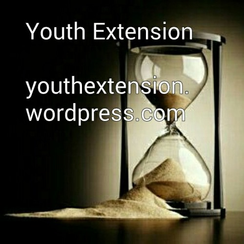 Youth Extension's avatar