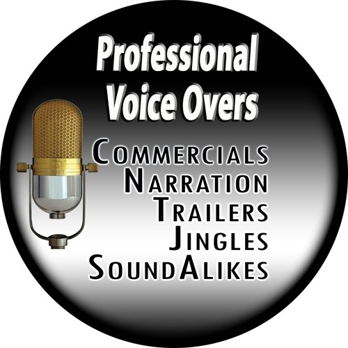 Voice Over Artist's avatar