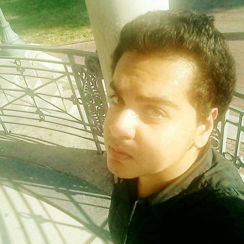 Rany Refaat Mesdary's avatar