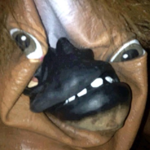 DJ Horsehead's avatar
