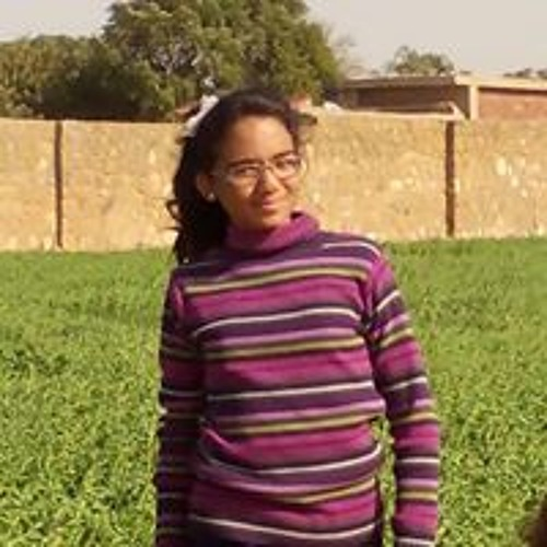 Radwa Elkasas's avatar