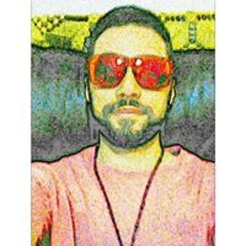 Vinícius Lourenço's avatar