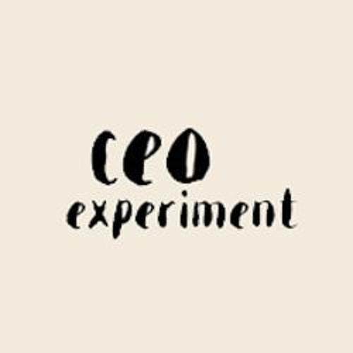CEO experiment's avatar