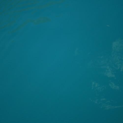 Whurl's avatar