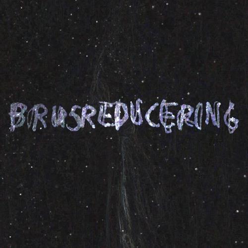 Brusreducering's avatar