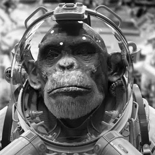 Scuz Monkey's avatar
