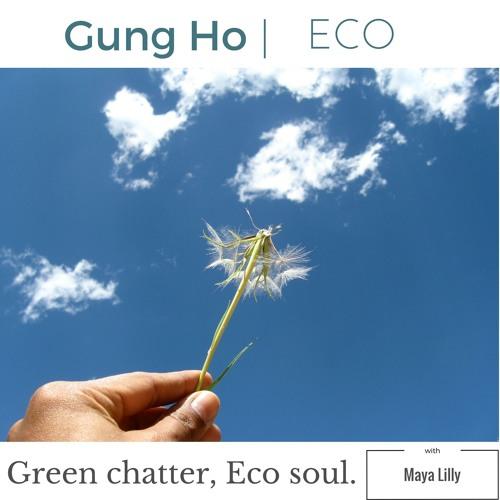GungHo Eco's avatar