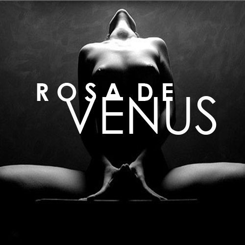 Rosa D Vênus's avatar