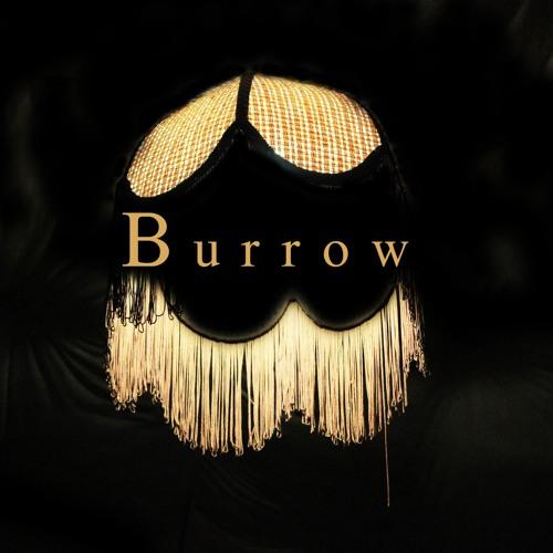 Burrow Studio's avatar
