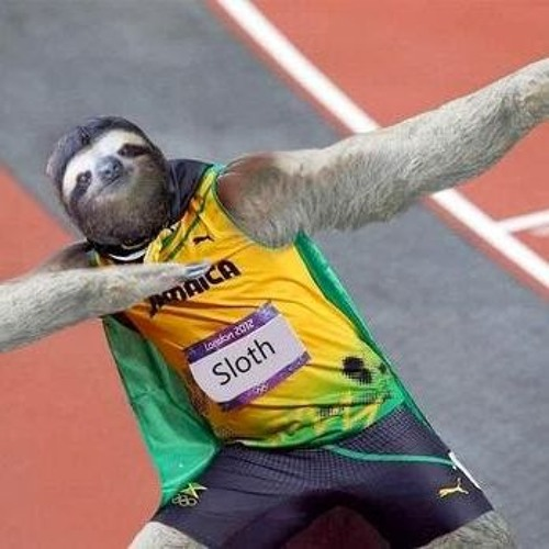 Cool Sloth's avatar