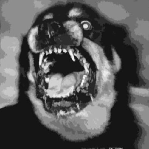 Subliminal Audio's avatar