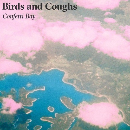 Birds and Coughs's avatar