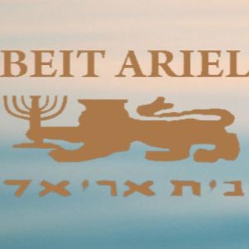 Beit Ariel's avatar