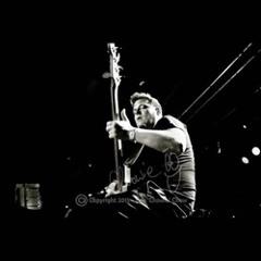 Drew Dedman bass player