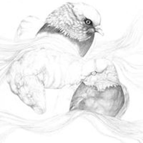 rattyfinn's avatar