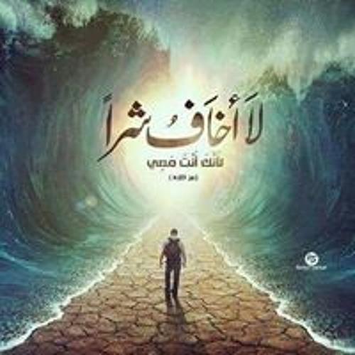 Moemen Kareem's avatar