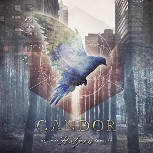 CANDOR's avatar