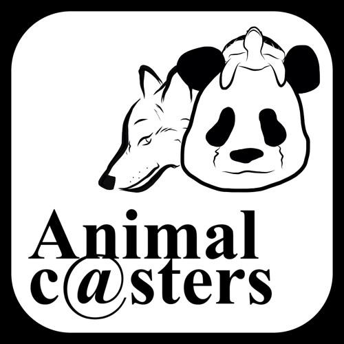 Animal c@sters's avatar