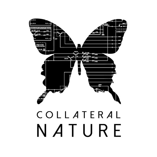 Collateral Nature's avatar