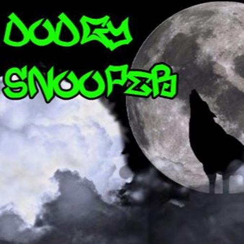 DodgySnooper's avatar