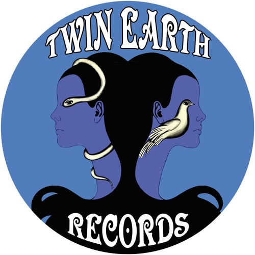 Twin Earth Records's avatar
