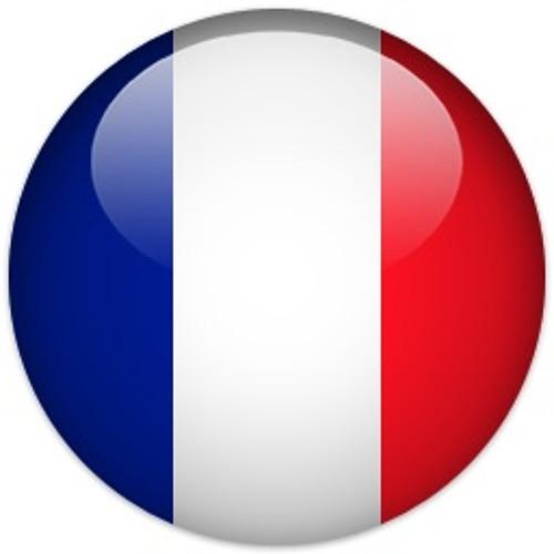 FM1010's avatar
