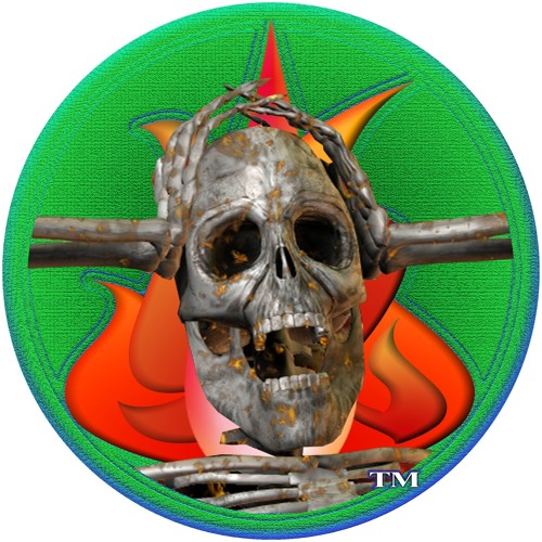 Pyronoia Dynamics's avatar