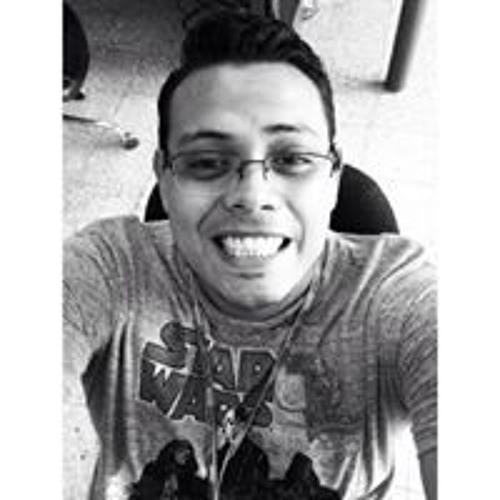 Holman Sanchez Garcia's avatar