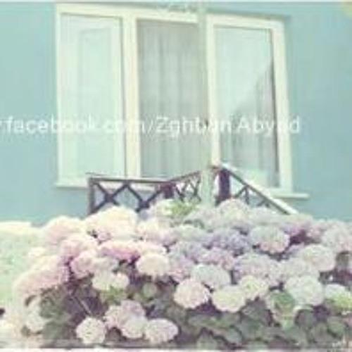 MOHAMED TAHA's avatar