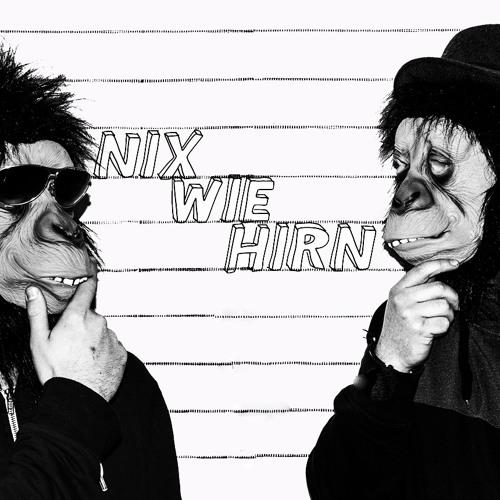 Nix Wie Hi(r)n's avatar