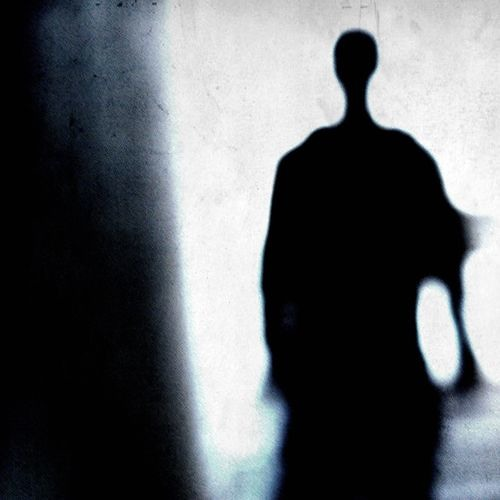 Shapkin's avatar